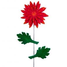 Chrysantheme rot / orange