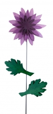 Chrysantheme rosa / lila / flieder
